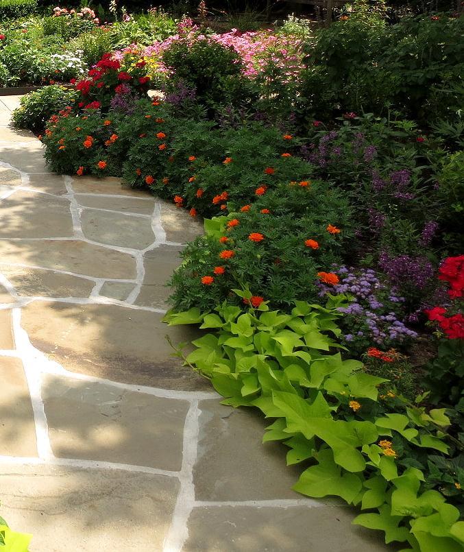 The OtHeR HoUsToN: GREAT BUNGALOW GARDEN IDEAS on Bungalow Backyard Ideas id=49713