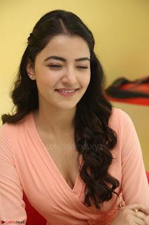 Rukshar Mir in a Peachy Deep Neck Short Dress 090.JPG