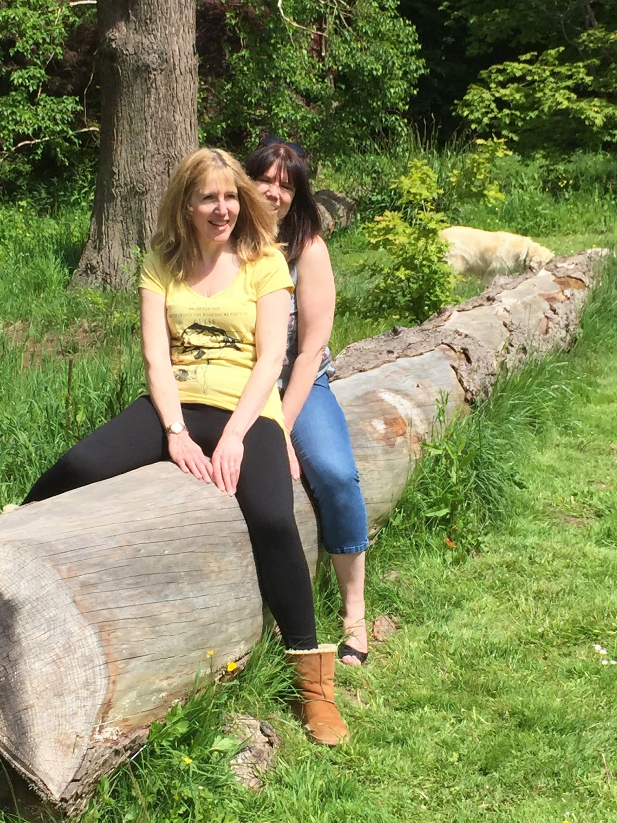 Linda & Sarah on a log at National Trust Dyffryn Gardens