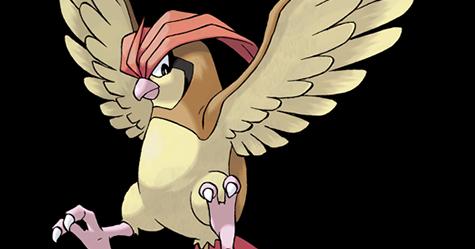 比比鳥配招最佳技能,比比鳥剋星 - Pidgeotto Pokémon Go 寶可夢精靈圖鑑攻略 - 寶可夢配招圖鑑攻略站