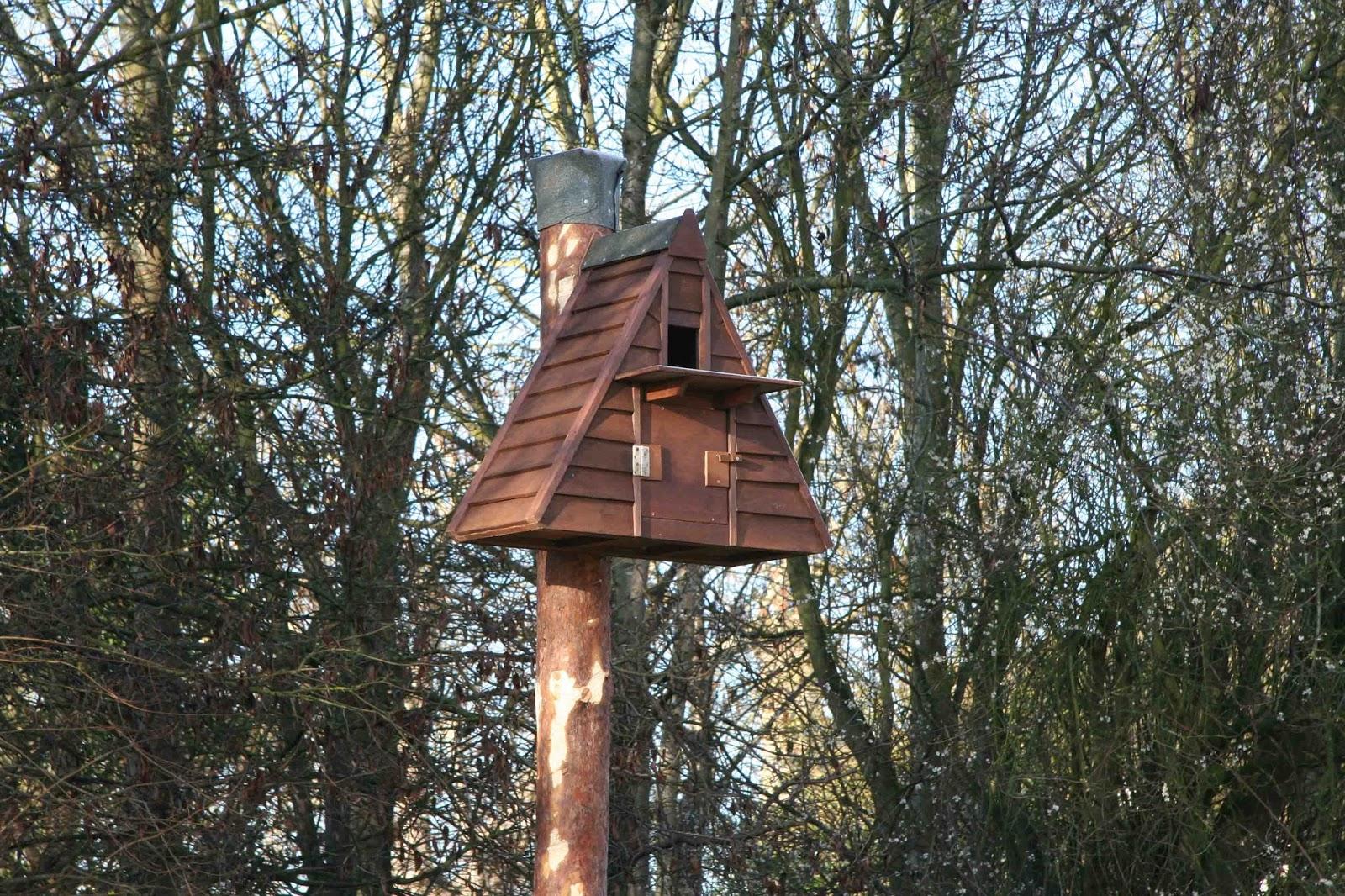 Bisham Barn Owl Group: BBOWT Barn Owl boxes