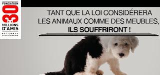 http://www.30millionsdamis.fr/agir-pour-les-animaux/petitions/signer-petition/pour-un-nouveau-statut-juridique-de-lanimal-22.html