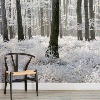 skog tapet vinter landskap fototapet trädstammar