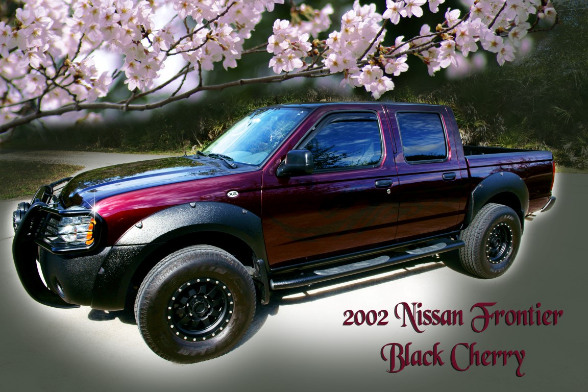 Black Cherry Car Paint: Photo Adventures: Gifts For Car Enthusiasts
