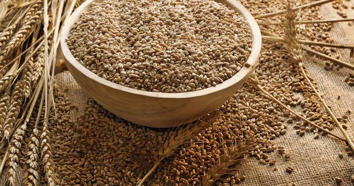 16 Manfaat dan Khasiat Roti Gandum untuk Kesehatan