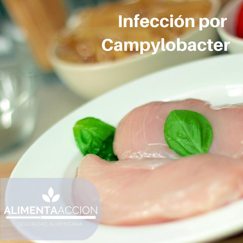 Campylobacter, manipulación de alimentos, inocuidad, enfermedades transmitidas por alimentos, contaminación cruzada, higiene, seguridad alimentaria