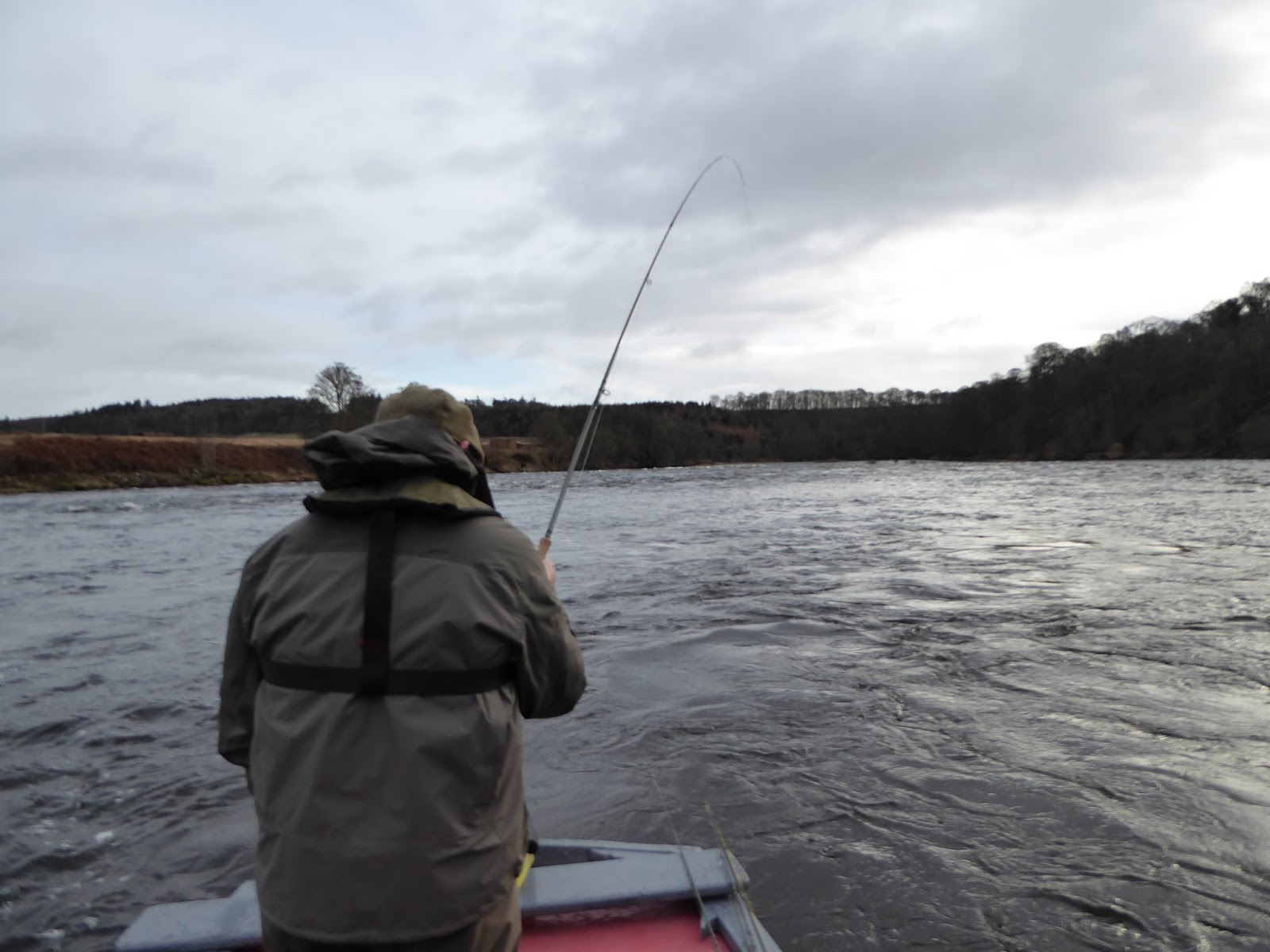 Salmon fishing scotland salmon fishing scotland spring for Is fishing good today