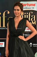 Esha Gupta in a Deep Neck Sleeveless Dark Green Gown at IIFA Utsavam Awards 2017     14.JPG
