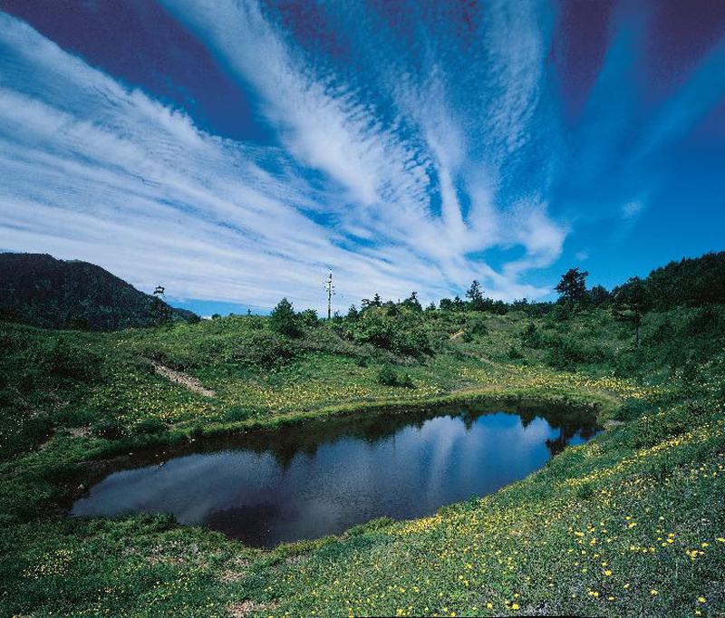 一真禪悟理念分享園地: 梨山福壽山農場