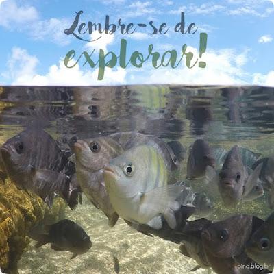 lembre-se de explorar, porto de galinhas, pernambuco, brasil, piscinas naturais