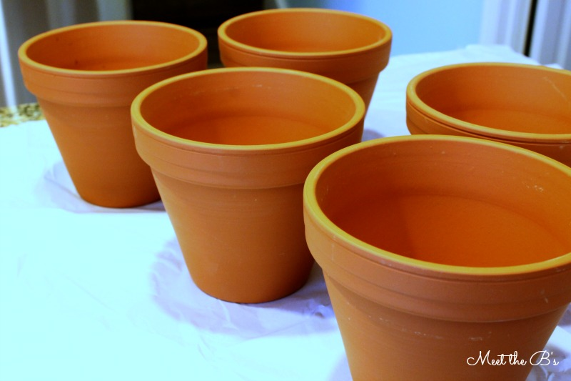 DIY Painted Spring Planters- An easy Easter craft and great gift idea!