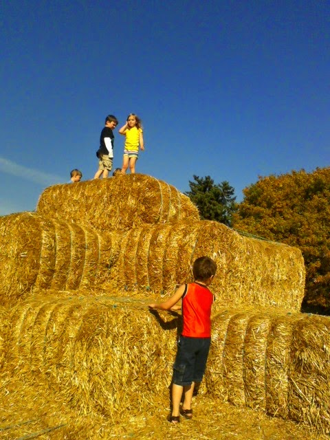 Fall Family Fun: Straw Pyramid, Hayride, Maze in Henry County Indiana