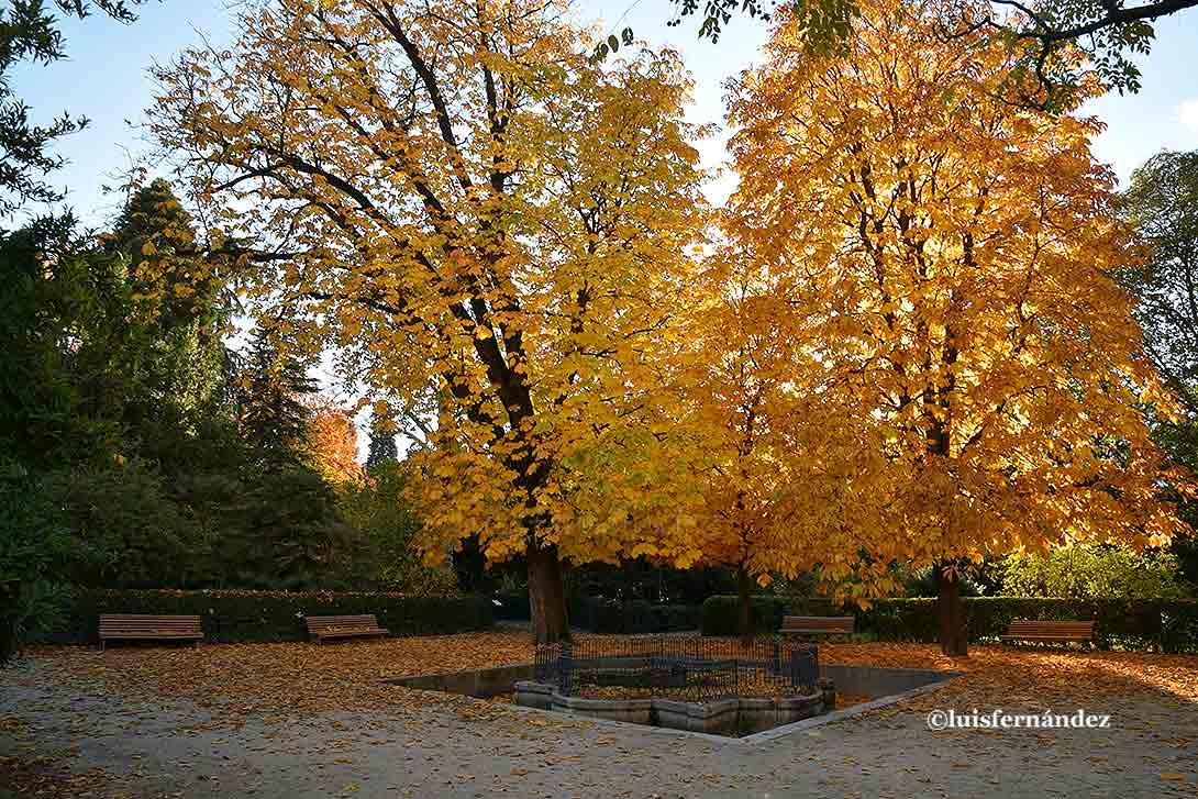 Ocio y cultura colores a media tarde oto al en el real for Ocio y jardin