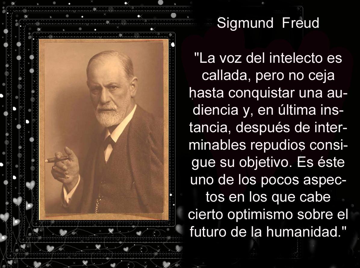 Frases De Freud Psicologia: Psicología Y Sociología: Psicología Y Sociología