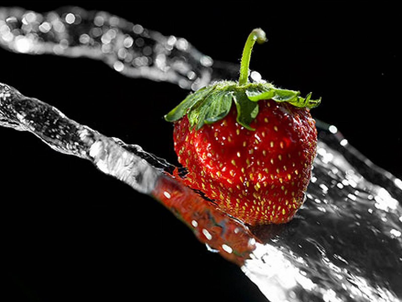 Funny Car Wallpapers Free Wallpapers Strawberry Wallpapers