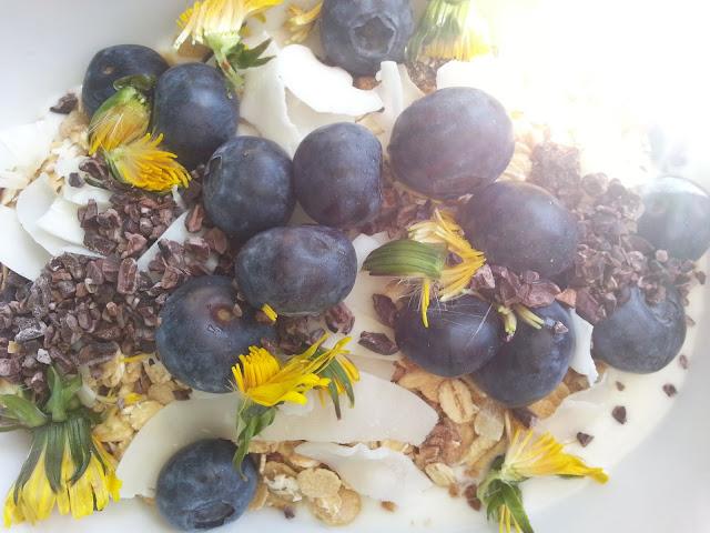 Løvetann knopper revet og drysset over tyrkisk yoghurt