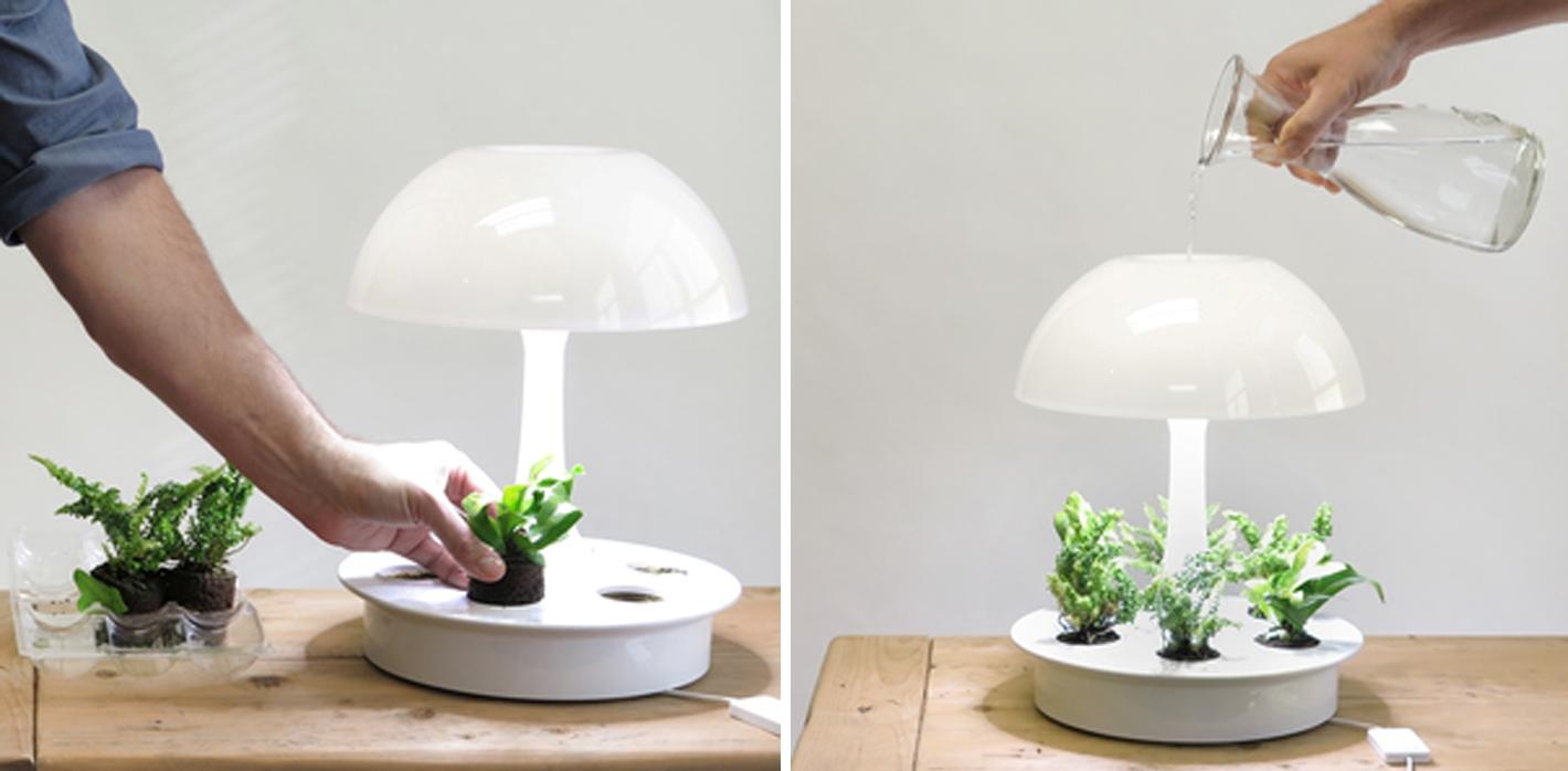Lampade led piante la scelta giusta variata sul design - Lampade a led per casa ...