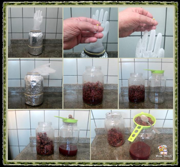 Aceto balsâmico e vinagre de jabuticaba 4