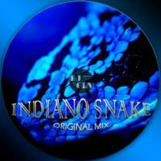 INDIANO-SNAKE-ORIGINAL-MIX-DJ-GRV