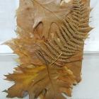http://unhogarparamiscositas.blogspot.com.es/2016/12/empaquetado-bonito-con-hojas-secas.html