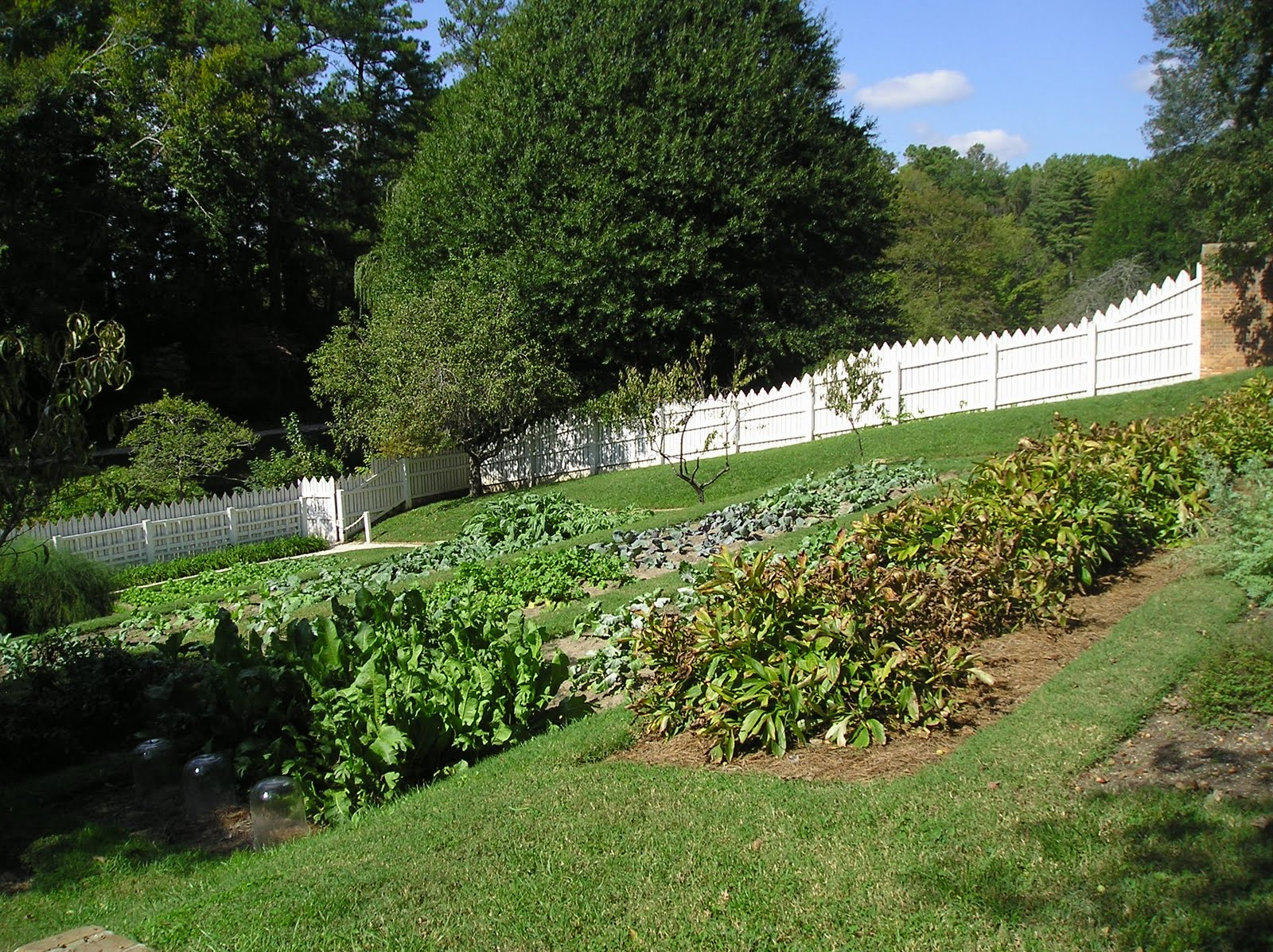 American Homestead: My Dream Garden on My Dream Patio id=26526