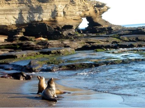 Reserva Biológica Marina de Galápagos