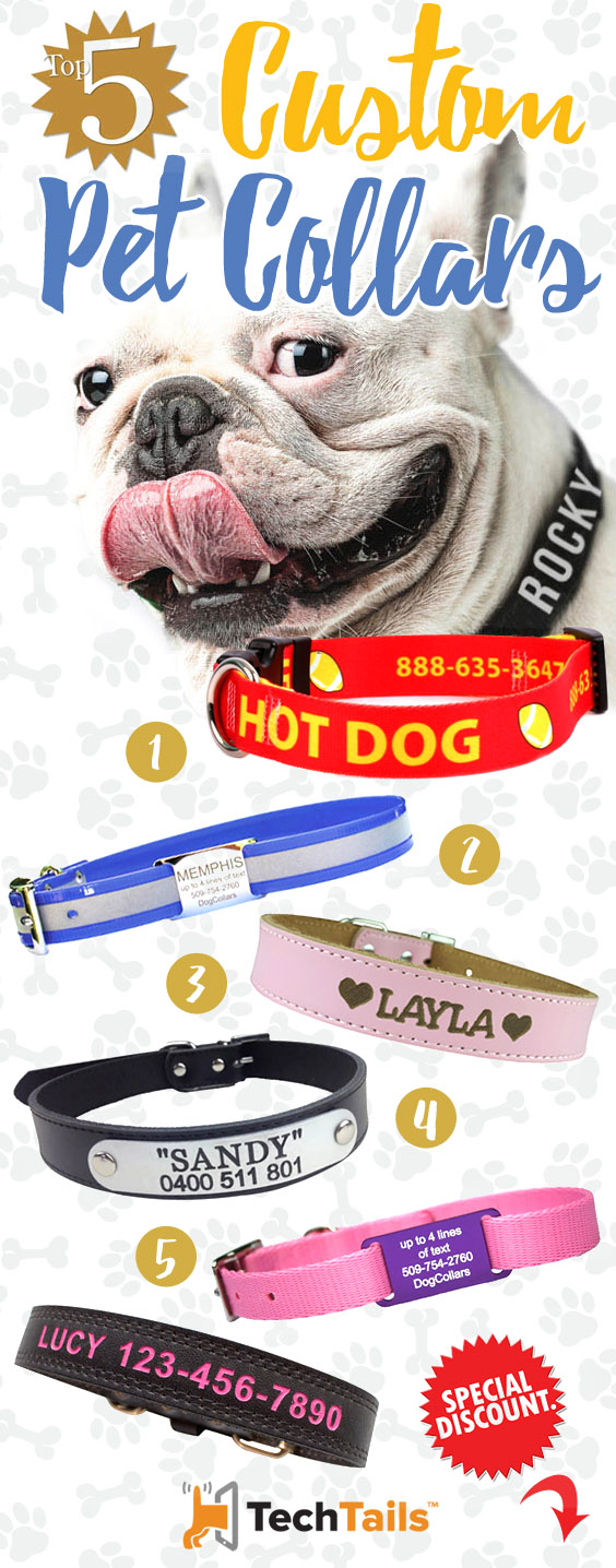 top-5-personalised-collars