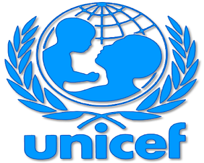Boko Haram Nigerian child bombings this year are quadruple 2016's: UNICEF