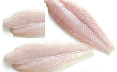 Frozen Grouper Fillets