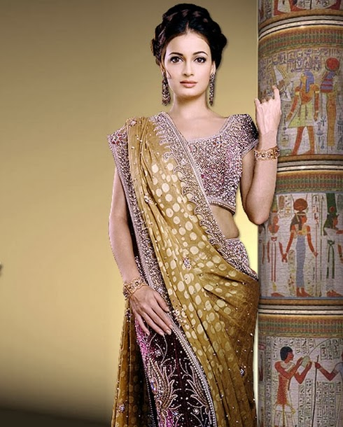 Diya Mirza colorful saree
