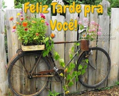 Feliz Tarde pra Você!