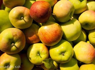 Basket of Mantet apples