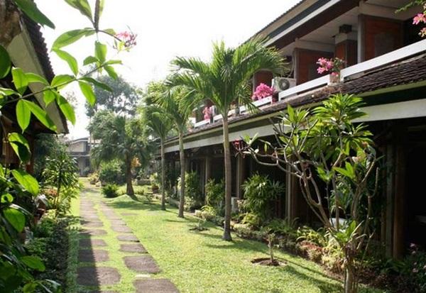 Daftar Penginapan Murah Di Bali