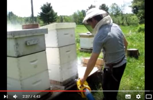 Ομιχλοποιητής μελισσιών ANEL: Εύκολα, γρήγορα και οικονομικά για μελίσσια χωρίς βαρρόα video