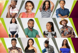 BBNaija: Sexual indulgence no longer selling