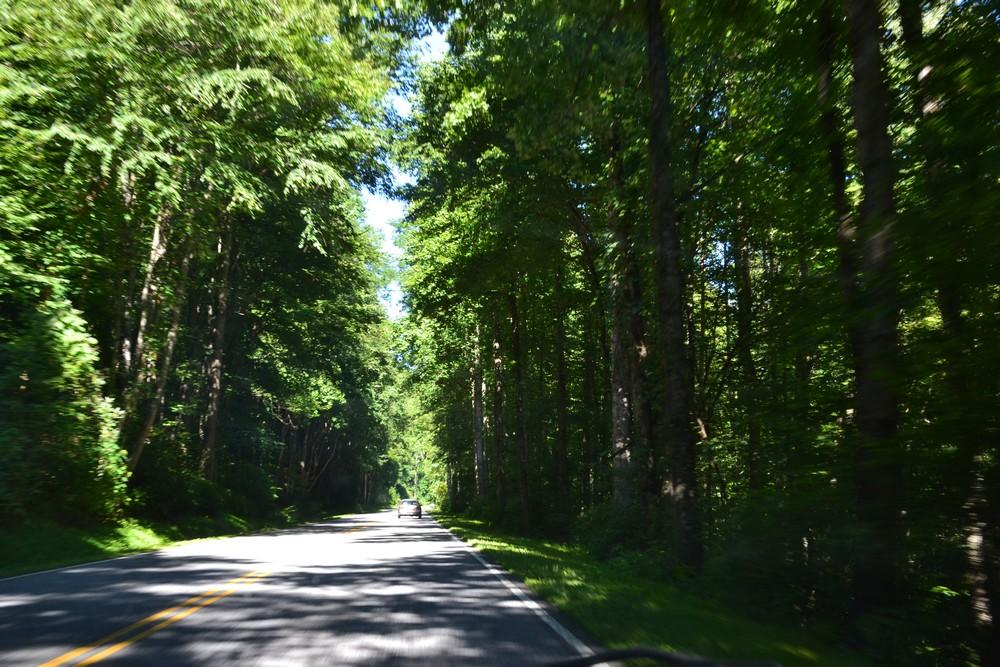 smoky montains, north carolina, appalaches