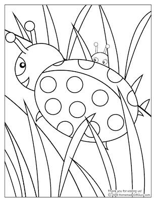 Imagenes Para Colorear Dibujo De Una Mariquita Con Su Bebe