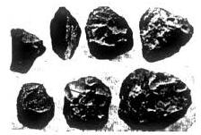 Kapak+Genggam.png (224×151)