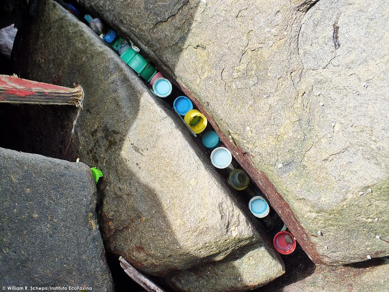 Enormes quantidades de plástico se acumulam em costões rochosos da região.