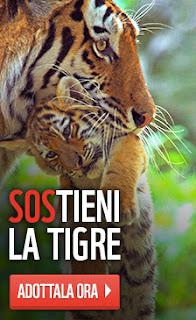 http://www.wwf.it/tigre/