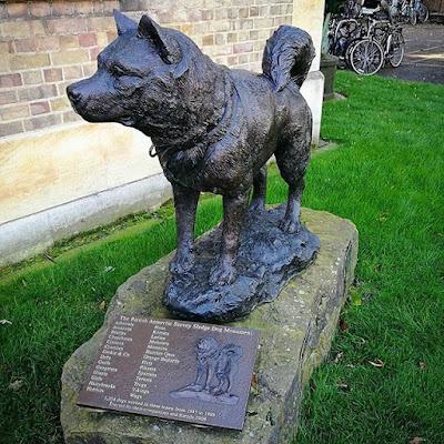 Monumento al perro polar en el Museo Polar, Cambridge