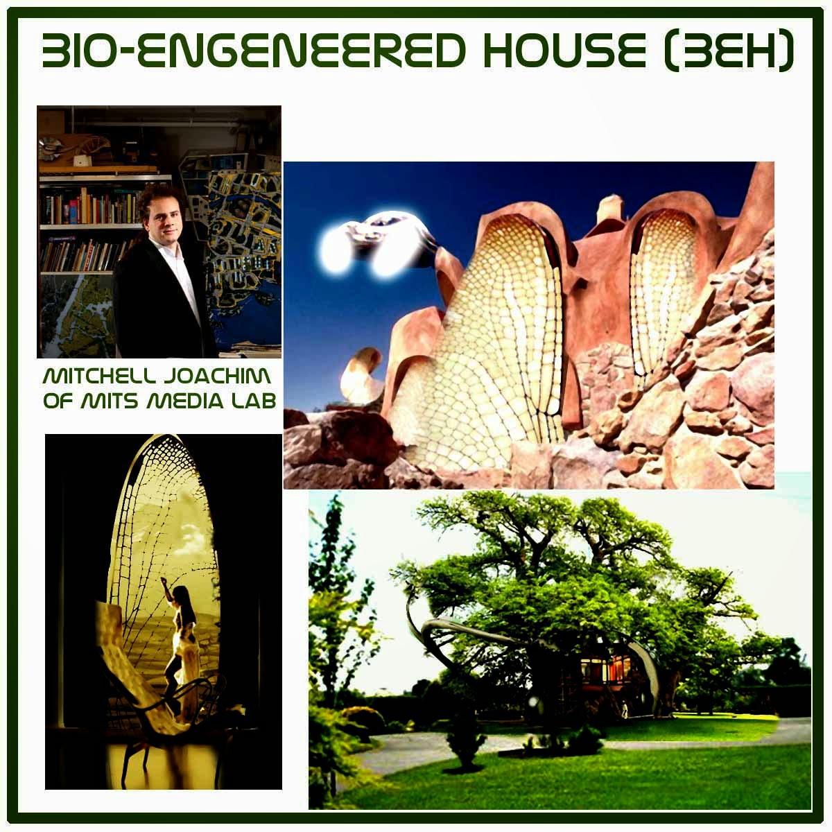 blemya bio engineered house beh. Black Bedroom Furniture Sets. Home Design Ideas