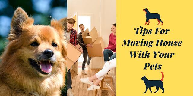 https://realtytimes.com/advicefromtheexpert/item/1018713-moving-out-for-the-first-time-free-checklist