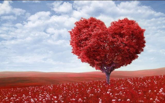Sadarilah, bahwa Cinta yang Tumbuh karena Iman akan senantiasa Bersemi