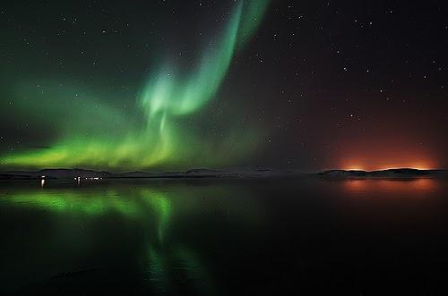 Latin Name Northern Lights