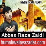 http://www.humaliwalayazadar.com/2017/10/abbas-raza-zaidi-nohay-2018.html