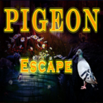 8BGames Pigeon Escape Walkthrough