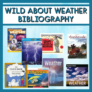 These weather themed books are perfect for text sets, guided reading, and independent reading. Students in the summer reading camp enjoyed using them with projects and partner reading.