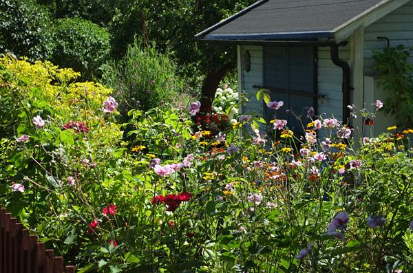 My Secret Garden: Eriksdalslunden allotment garden association ...