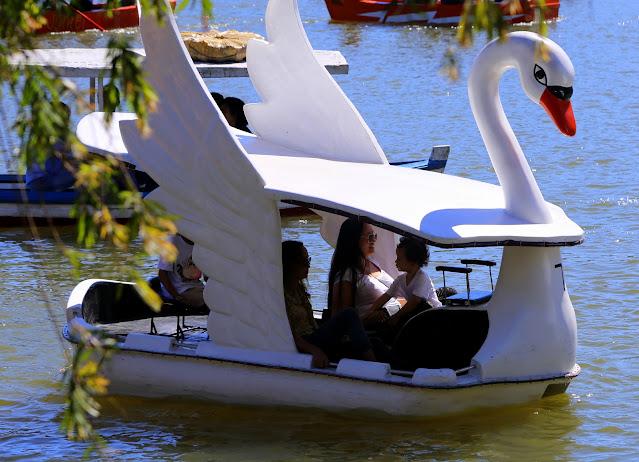 Paddle boat in Burnham park